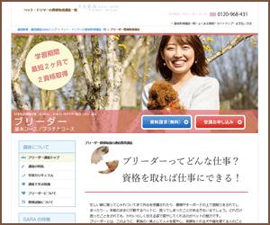 SARAスクールジャパンの資格基本・プラチナコース